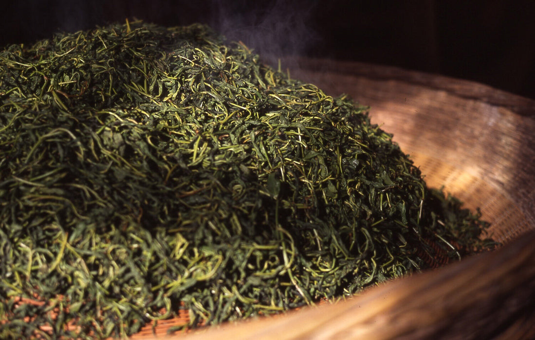Anhui Yellow Tea sample processing I