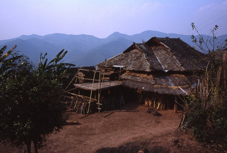 Bamboo Stick Pu-erh Tea village