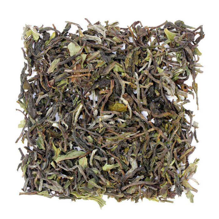 Darjeeling 1st Flush, Goomtee Estate 2020 sample
