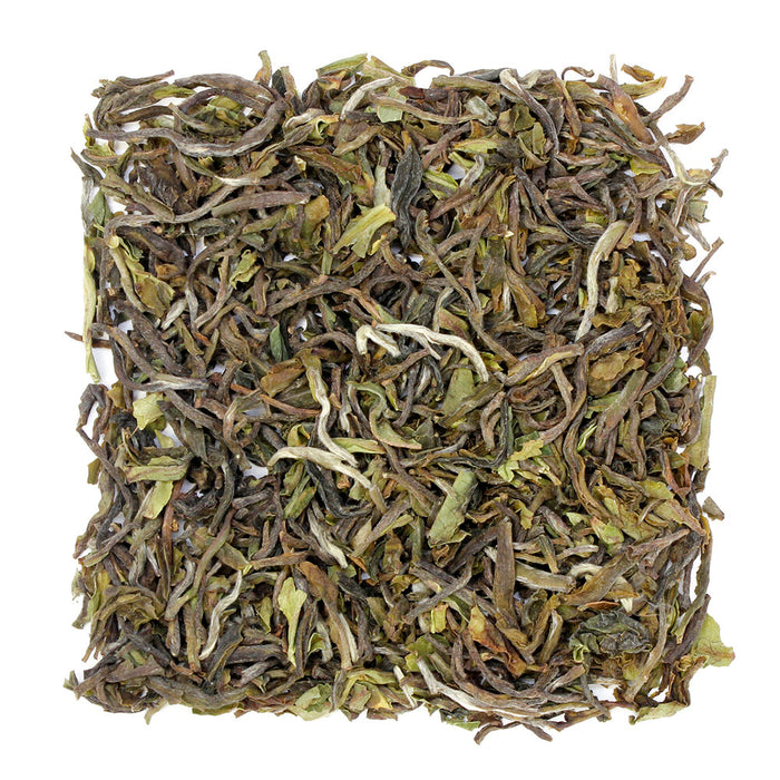 Darjeeling 1st Flush, Jungpana Estate 2020