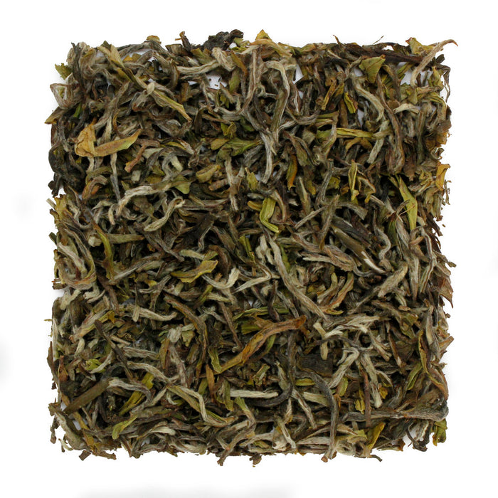 Darjeeling 1st Flush, Jungpana Estate EX 5 2019