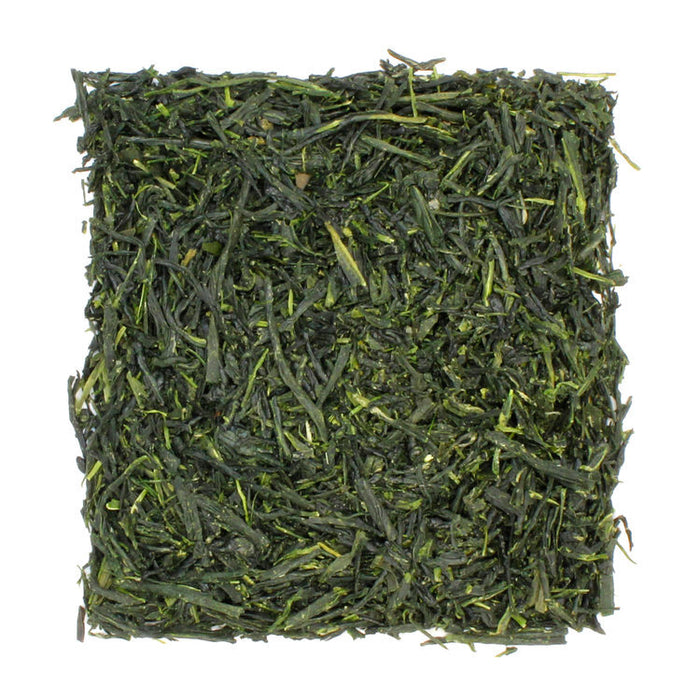 Gyokuro Green Tea sample