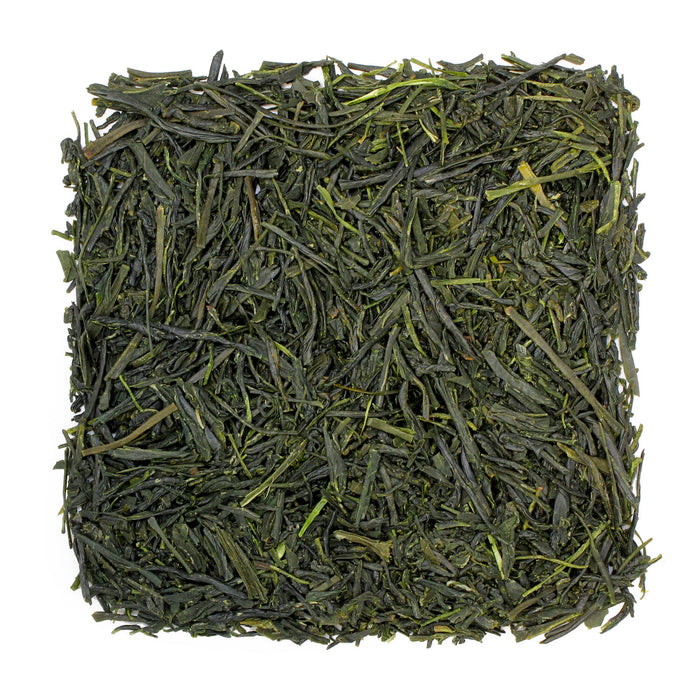 Sencha Yabukita Green Tea