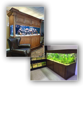 Custom Designed Show Aquariums