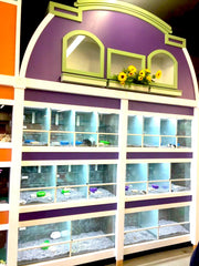 Custom Design Pet Store Fixtures