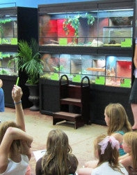 Reptile Enclosures Retail Animal Display by DAS Aquariums
