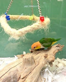 Bay Enclosures for Small Parrots