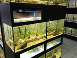 DAS Aquariums Pet Enclosures for Fish