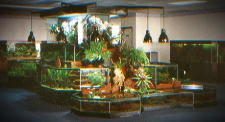 3D Aquarium ShowPiece in a Lobby