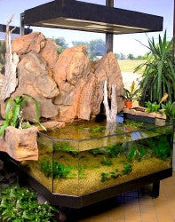 3D Aquarium in Lobby with Artificial Rock Background