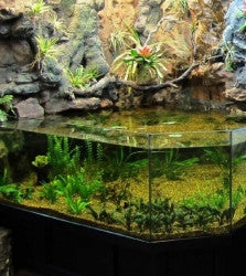 DAS Aquariums 3D Aquarium Archer Fish Waterfall Display