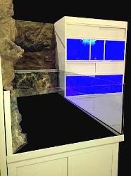 Custom Design 3D Aquarium with Marine Fish Enclosure