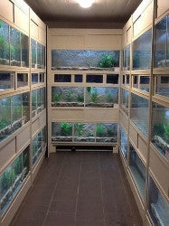 DAS Aquariums Thrive Freshwater Enclosure Fish Retail Unit