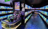 3-D Aquariums or Touch Ponds