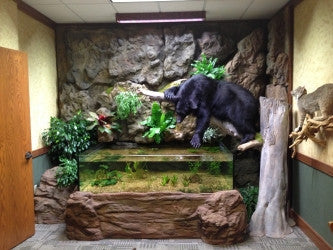 Custom Design 3D Aquarium Bank Office displaying Bear