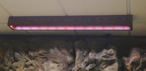 Custom LED Light Fixture by DAS Aquariums or Dutch Aquarium Systems