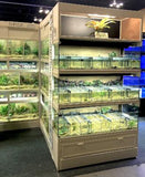 Betta and Specialty Fish Commercial Display