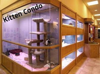 Puppy & Kitten Custom Design Kennel Enclosures