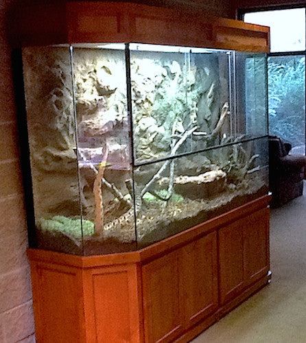 "Exhibit ""Rattle Snake Terrarium"""