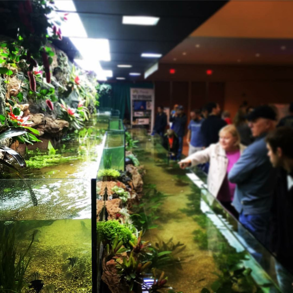 "41ft Riverbank Tank ""Aquatic Experience 2015"""