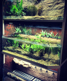 "Commercial Freshwater Fish Display Racks ""THRIVE"""