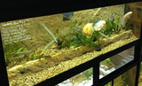 DAS Aquariums Large Display Tanks