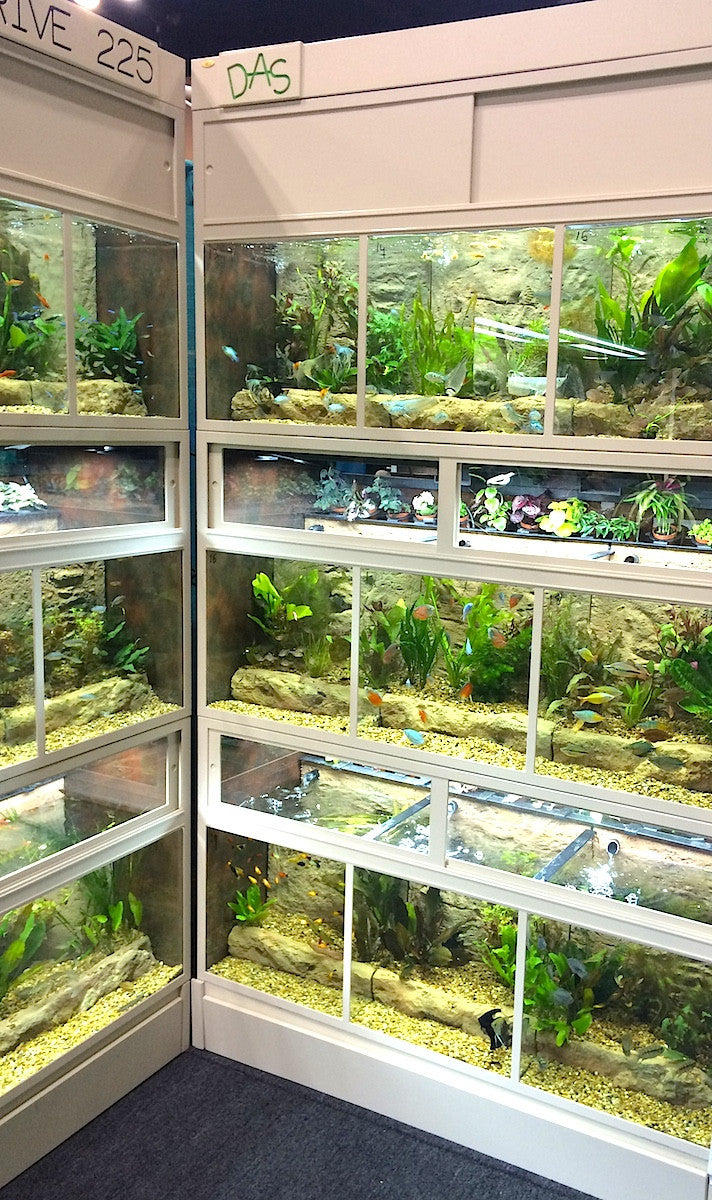"Freshwater Fish Enclosures ""THRIVE"""