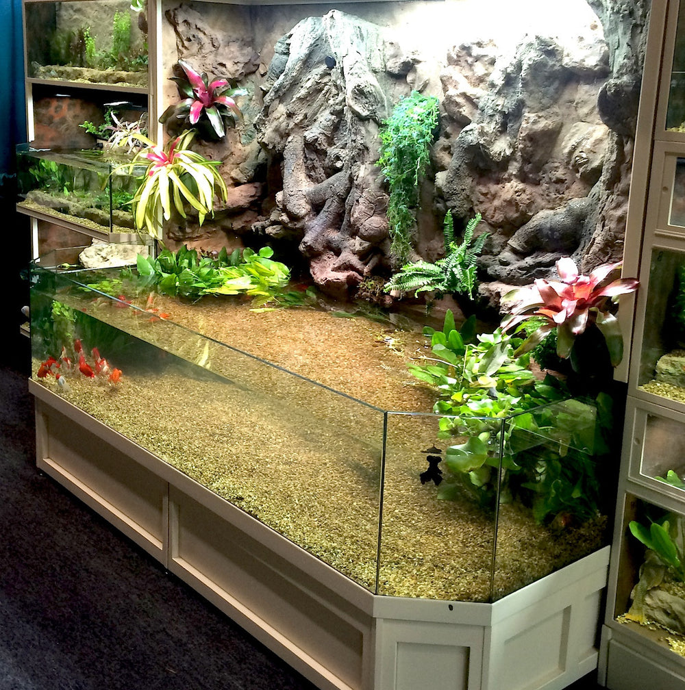 Thrive 3D Aquarium at the Aquatic Experience Tradeshow 2014