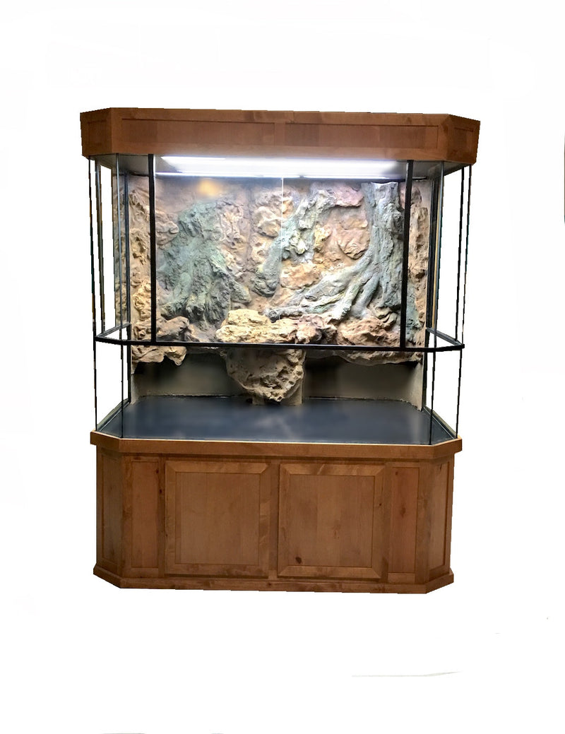 Aquatic Turtle Tank Display
