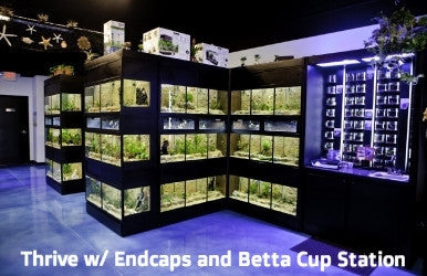 DAS Aquariums Thrive Freshwater Fish Enclosure Retail Unit
