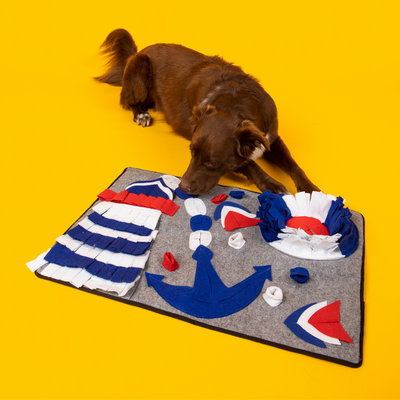 "Brown dog sniffing the ""sailor of the sea"" dog feeding and snuffle mat in yellow background"