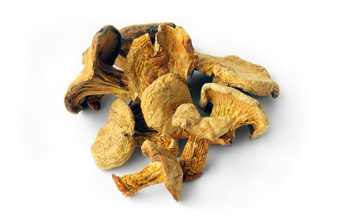 Chanterelles - Large Pack - Dehydrated