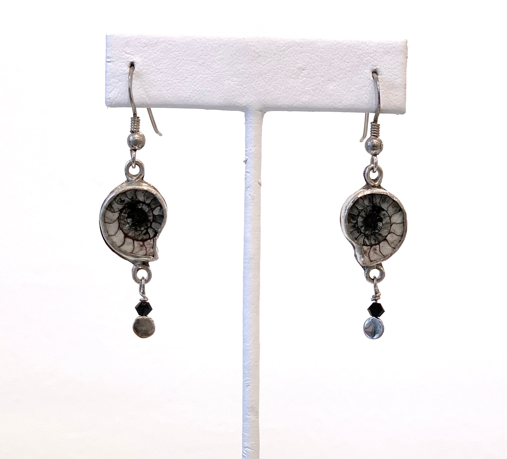 Ammonite Shell Earrings