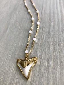 White Shark Tooth Necklace with Rainbow Moonstones