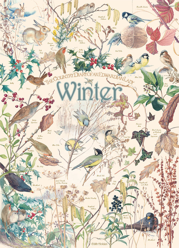 Cobble Hill Puzzle- Country Diary: Winter