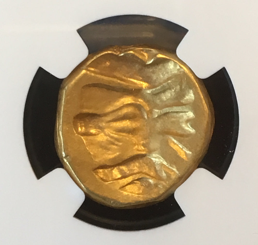 Unique Babylonian Gold Double Daric 328-311bc NGC Ch VF with Club symbol