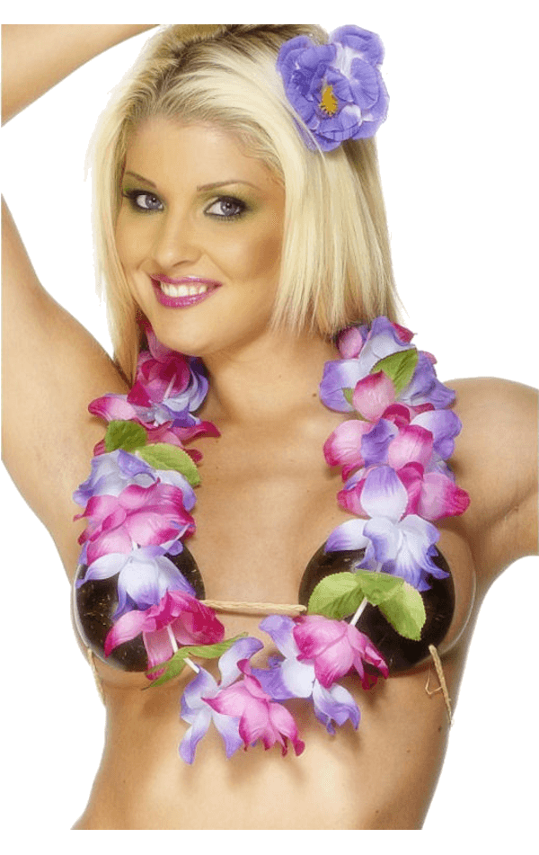 Hawaiian Garland (Pink & Purple)