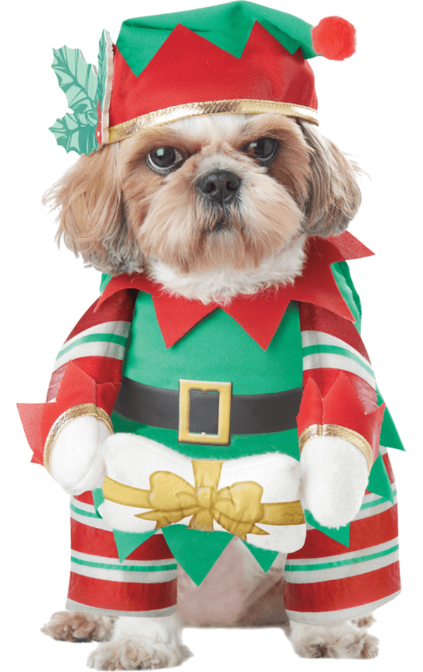 Elf Pup Christmas Dog Costume