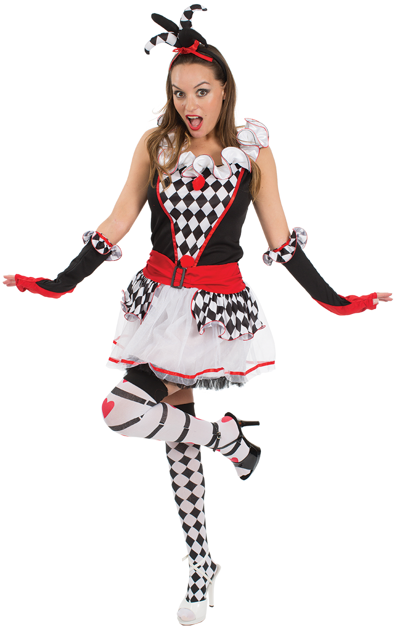 Adult Harlequin Jester Fancy Dress Costume