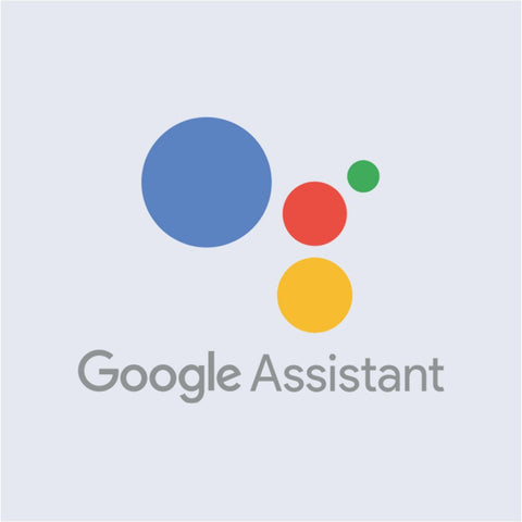 Google Assistant compatibility with Voice Assistant feature