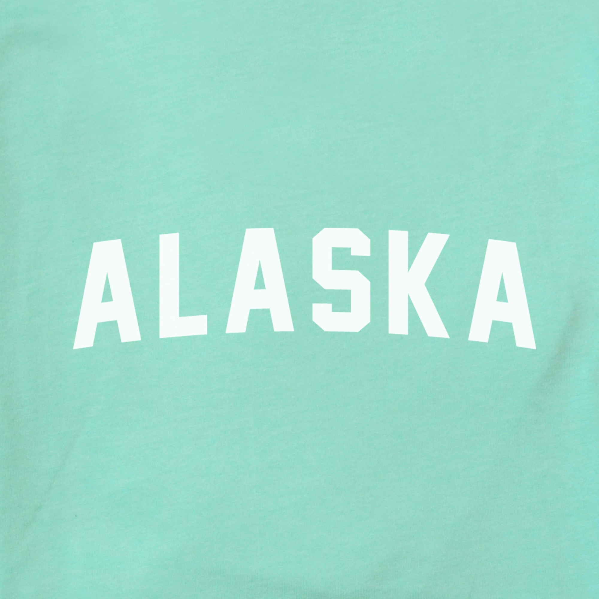 Alaska Arched The Home T XS Mint
