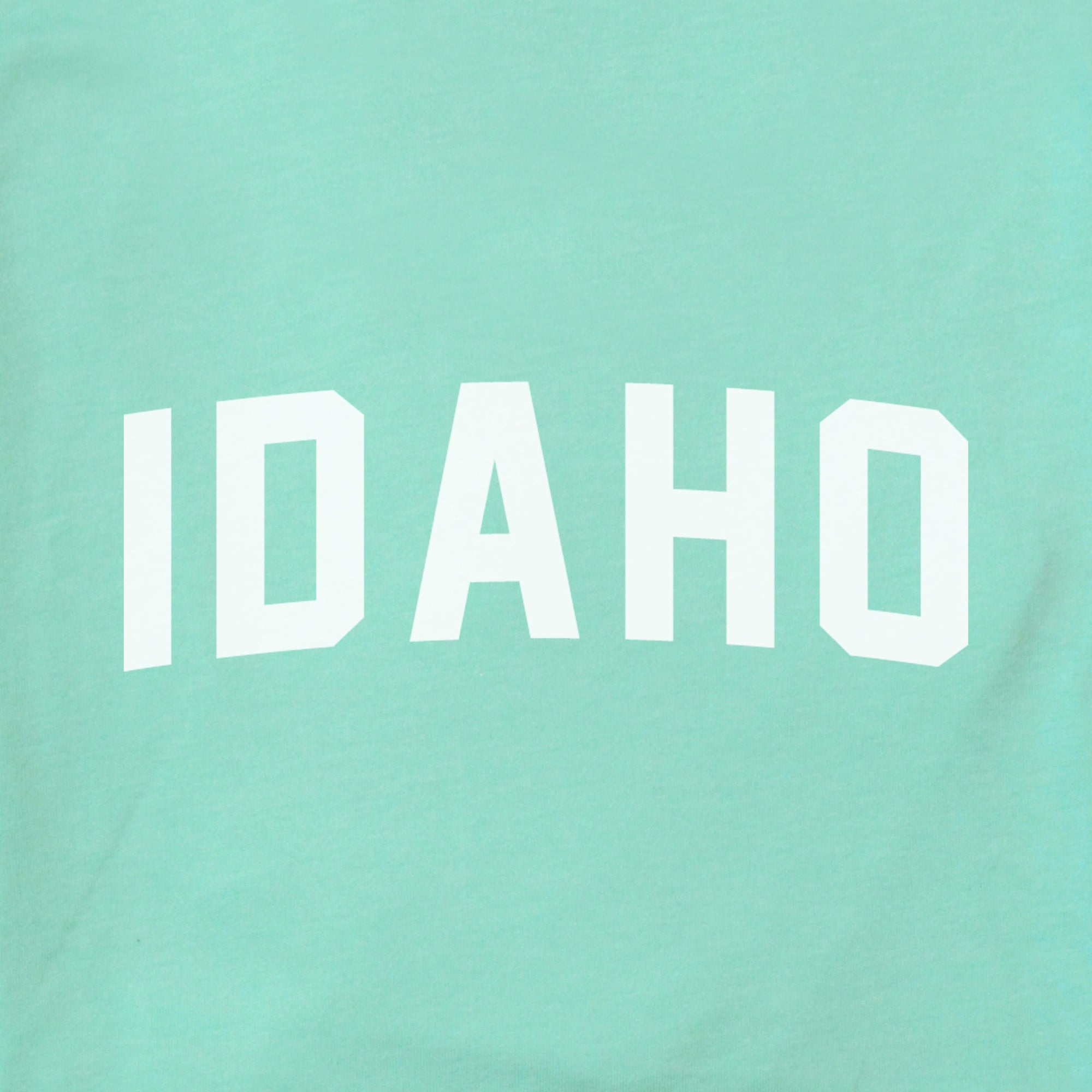 Idaho Arched The Home T XS Mint