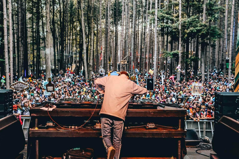 Electric Forest Brings Fans and Community Together With the Wish Machine