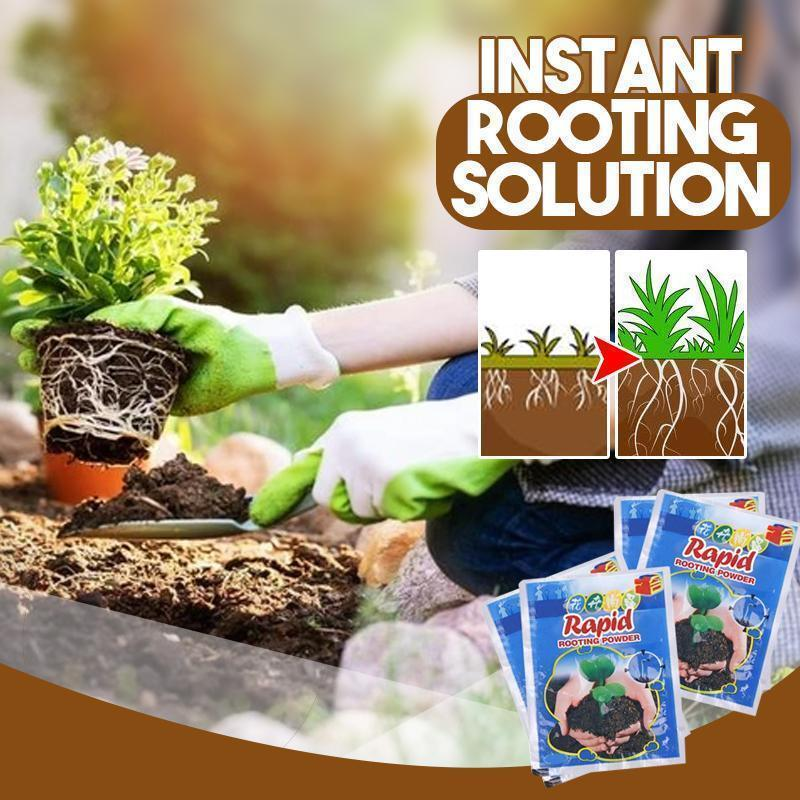 Instant Rooting Solution