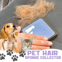 Load image into Gallery viewer, Pet Hair Sponge Collector