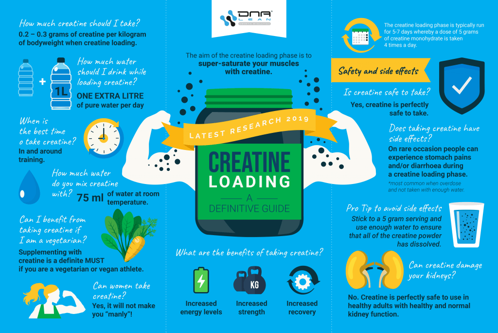 dna lean creatine loading infographic