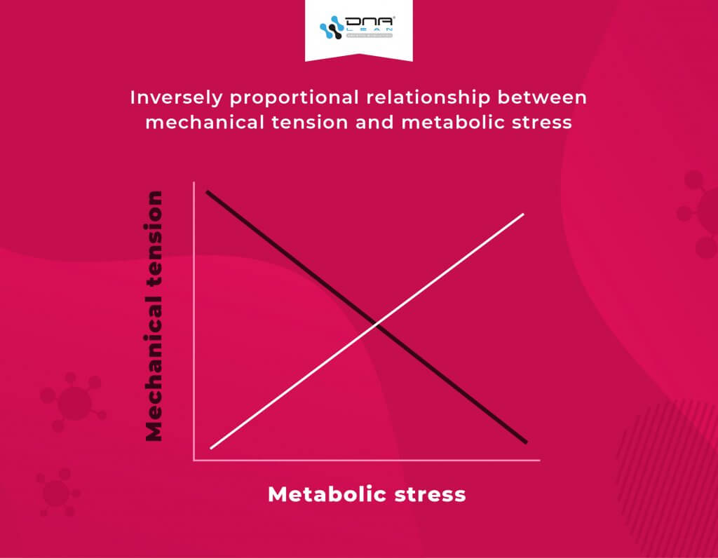 Inversely proportional relationship between mechanical tension and metabolic stress