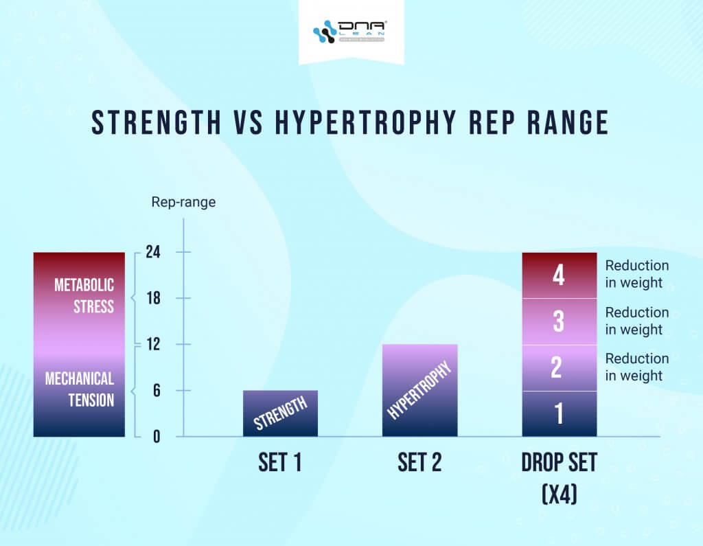Strength Vs Hypertrophy Rep Range