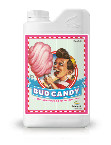 Bud Candy | 250 ml