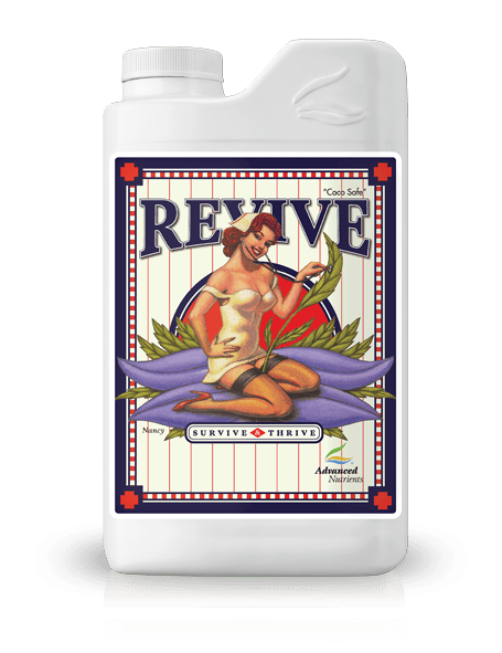 Revive | 250ml